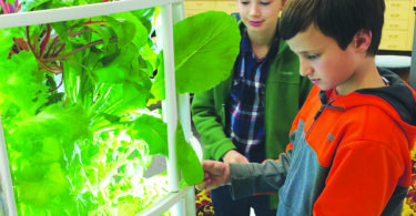 Vlad Peters and Cory Mueller check on their plants in the garden tower (above). Students in Brian Peters' fourth grade class at Lincoln Elementary enjoy the fruits, or should we say vegetables of their labor.